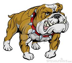 Bulldog Cartoon Stock Photos, Images, & Pictures – (1,044 Images)
