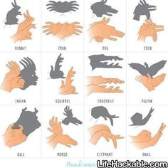 More Shadow Puppet Hacks Here