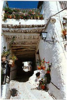 La Alpujarra Granada. Spain