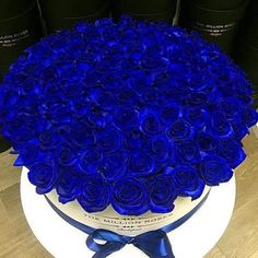 Gorgeous Blue Roses