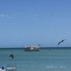 Mar Zaragoza Margarita, Beach, Water, Outdoor, Zaragoza, Islands, Countries, Venezuela, Gripe Water
