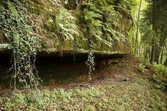 GC20FX5 Geheimnisvolles Saarland: Wasserfall im Mookenloch (Multi-cache) in Saarland, Germany created by DrAlzheimer