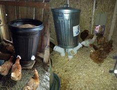 Mangeoire fait maison pour poule : des idées originales Agriculture, Homesteading, Canning, Plein Air, Chicken, Dinosaurs, Garden, Home, Chicken Coop Garden