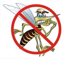 Recebi aqui no blog 2 receitas a base de cravo daíndia, testadas pelos seguidores. Segundo eles, os preparados afastam o mosquito, evita que eles e quaisquer outros mordam / piquem a nossa pele. É bem simples:  RECEITA 1: REPELENTE DOS PESCADORES **Enviada por Claudia INGREDIENTES: 1/2 litro de álcool; 1 pacote de cravo da…