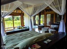 Susan Portnoy: WARNING: Safaris Are Highly Addictive! A Primer for the Adventure of a Lifetime (PHOTOS)