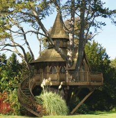 Treehouse has a very unique shape