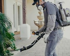 Pest Control Mesa AZ with no yearly contract. We are the local experts for Scorpions, Bed bugs, termites and Mosquitoes. Guaranteed pest control since Bee Removal, Protective Dogs, Pest Control Services, Free To Use Images, High Quality Images, Hd Wallpaper