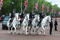 11 horses from the Mounted Branch formed the Grey Escort for the Royal Carriage Procession during the Queen's Diamond Jubilee