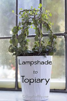 How to make the base for a topiary from an old thrifted lampshade. Via www.songbirdblog.com