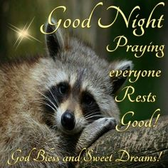 Good Night Everyone, God Bless You! Good Night Everyone, Good Morning Good Night, Happy Wednesday, Happy Friday, True Love Waits, Good Night Blessings, Waiting For Love, 1 Timothy, Good Night Sweet Dreams