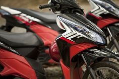 50cc Mopeds, Peugeot Mopeds and Honda Moped   Mopedlicence.com
