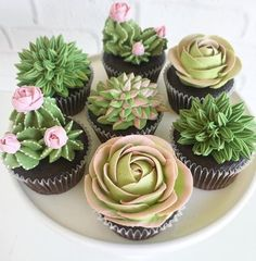 Adore these.and cupcakes. ・・・ We can't handle how cute these succulent cupcakes are by 🌵🌺 Pretty Cakes, Cute Cakes, Beautiful Cakes, Amazing Cakes, Kaktus Cupcakes, Succulent Cupcakes, Garden Cupcakes, Wedding Shower Cupcakes, Bridal Shower Desserts