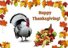 Happy Thanksgiving Turkey Pictures Thanksgiving is celebrated in the end months of the year and it is one of the biggest festivals for mosts of Contry Thanksgiving Turkey Pictures, Thanksgiving Movies For Kids, Happy Thanksgiving Images, Thanksgiving Greeting Cards, Thanksgiving Day Parade, Thanksgiving Greetings, Thanksgiving Messages, Turkey Photos, Thanksgiving Feast