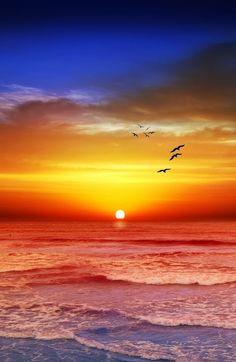 #Sunset | Melbourne, Victoria, #Australia | Precious World on Google+ #beach