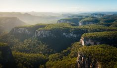 the sandstone formations of Carnarvon Gorge has resisted millions of years' erosion. Beach Aesthetic, Queensland Australia, Sunshine State, Countries Of The World, Vacation Destinations, Places To See, National Parks, Explore, Landscape