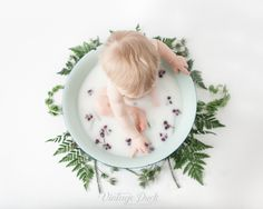 Unique baby photography of your little one in a milk bath, rocking a cake smash, or just being plain cute. Parents, siblings and pets are welcome! Plates, Tableware, Plate, Dinnerware, Tablewares, Dish, Dishes, Dinner Plates, Porcelain Ceramics