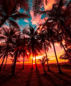 Beautiful destinations to stare at for hours by Michaela Vaux, Platinum manager for Tropic Skin Care Ltd Best Sunset, Beautiful Sunset, Beautiful Beaches, Voyager Malin, Cost Rica, Beautiful Landscape Wallpaper, Ocean Photography, Photography Tips, Portrait Photography