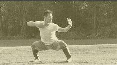 Master Yan Xin - Shaolin Qi Gong, Ba Duan Jin Shaolin Kung Fu, Chinese Martial Arts, Qigong, Life Pictures, Wing Chun, Jin, Gin