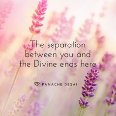 Our separation is actually an illusion. We are one big sea of energy with no beginning and no end.