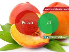 Fruits Vocabulary with Urdu / Hindi, Pictures vocabulary in Urdu, Fruits names with pictures, Fruits vocabulary in Urdu, Names of fruits with pictures, Fruits names with pictures, Vocabulary about fruits, Fruits names., Vocabulary in Urdu, Pictures vocabulary, Vocabulary for daily use, Everyday used vocabulary, English vocabulary, Vocabulary in Hindi / Urdu, Urdu to English, Hindi to English, ESL vocabulary, GRE vocabulary, CSS vocabulary, IAS vocabulary, English vocabulary in Hindi  Urdu Gre Vocabulary, English Vocabulary, Fruits Name With Picture, Fruits And Vegetables Names, Fruit Names, English Speaking Practice, Esl, Learn English, Grammar