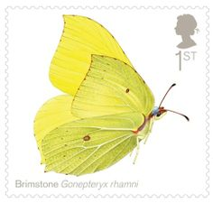 Royal Mail Butterfly Stamps   Royal Mail celebrates British butterflies in new stamp release