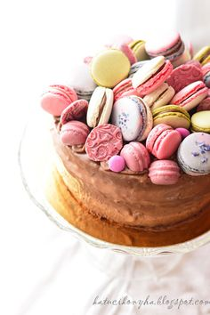 Macaron Chocolate Cake!