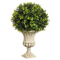16 Inches High Boxwood Ball-Shaped Artificial Topiary Plant With Decorative Urn for sale online Topiary Decor, Topiary Plants, Boxwood Topiary, Topiary Trees, Urn Planters, Artificial Topiary, Artificial Plants And Trees, Fake Plants, Green Plants