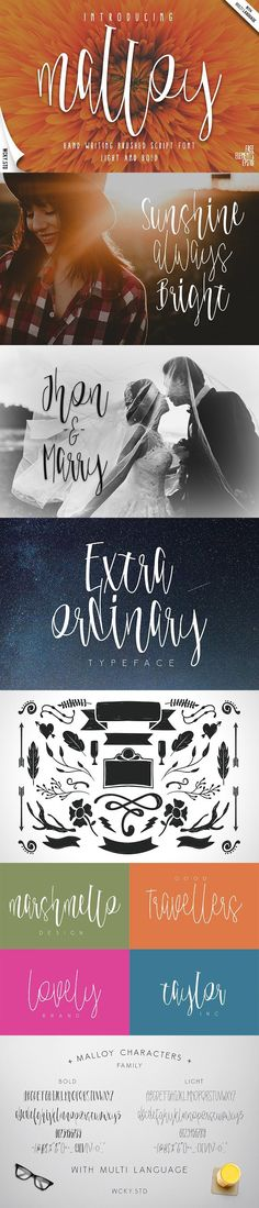 Malloy Font with Elements. Script Fonts. $14.00