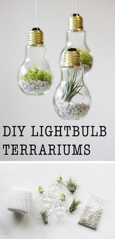 [orginial_title] – Shira Menaged 17 Easy DIY Home Decor Craft Projects DIY Lightbulb Terrariums Diy Craft Projects, Decor Crafts, Diy Room Decor, Home Crafts, Easy Crafts, Crafts For Kids, Arts And Crafts, Diy Crafts For Bedroom, Project Ideas