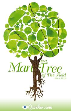Great for Tu B'Shevat or any other time that we need to look towards Nature to remind us of our potential!