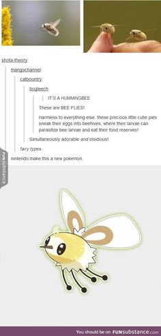 Welp, now we have a new generation 7 pokemon based off those little flies Gotta Catch Them All, Catch Em All, Cassandra Calin, Poker, Just In Case, Just For You, Funny Animals, Cute Animals, Tumblr Funny