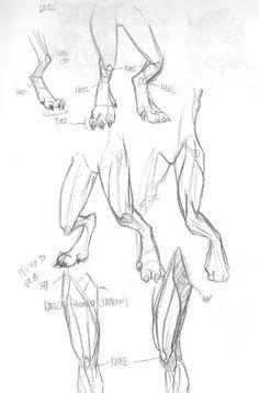 dragon feet drawings - Google Search