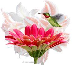 Bird & Flower spring flowers animated bird fly gif seasons graphic