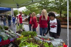 University of Arkansas students shop at the Fayetteville Farmers Market.