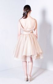 Rosalinda Dress with draped back Bespoke, Tulle, Ballet Skirt, Bridesmaid, Skirts, Dresses, Fashion, Taylormade, Maid Of Honour