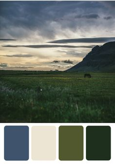 Let rolling hills and majestic plains be your style inspiration for your next room makeover. With BEHR paint in Tornado Season, Yucca White, Outdoor Oasis, and Secluded Woods, now it's easy to bring the outdoors in!