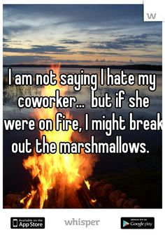 I am not saying I hate my coworker. but if she were on fire, I might break out the marshmallows. camping is for poor people and idiots! i will take my room service and turn down service anyday thank you! Work Memes, Work Quotes, Work Humor, Co Worker Memes, I Hate Work, I Hate My Job, Work Drama, Funny People, Hate People