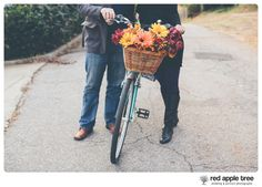 red apple tree photography: Danni + Jason Engagement with their dogs :) Greenville SC.