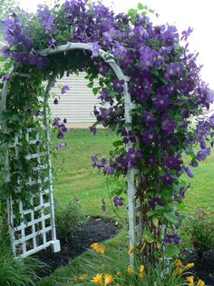 I would love to duplicate this look along the fence    http://jimandlaura.hubpages.com/hub/Flower-Chick