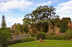 Hotel Casa de Aves tiene el honor de presentar a la Hacienda Purísima de Jalpa, quien se encuentra ubicada junto a un cristalino lago, ofreciendo a sus huéspedes un ambiente de tranquilidad, para conectarse con espíritu, mente y cuerpo. www.hotelesensanmigueldeallendeguanajuato.com