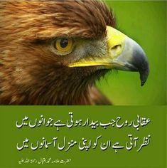 Iqbal Poetry In Urdu, Urdu Poetry Ghalib, Deep Words, True Words, Army Poetry, Allama Iqbal Quotes, Indian Poets, Famous Poets, I Need U