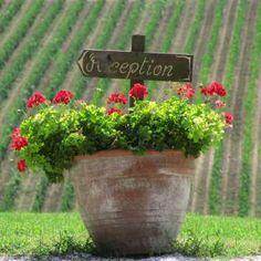 Viele liebevolle Details sorgen für Entspannung - Bio Urlaub in der Toskana