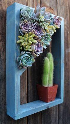 DIY Indoor Outdoor Succulent Garden Ideas Projects #diy #diyoutdoor #diyoutdoorideas Vertical Planter, Succulents Garden, Perennials, Indoor Outdoor, Diys, Planters, Shelves, Diy Crafts, Garden Ideas