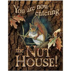 You Are Now Entering The Nut House Tin Sign , 5227755074 | Lang