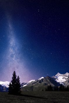 expressions-of-nature:  Alpine Night Sky from Dominic Kamp