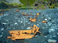 Shipwreck of a british trawler east of Dritvík on Snæfellsnes peninsula
