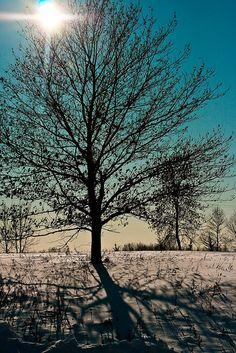 ✯ Goodmorning Sunshine - Minnesota
