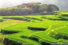 40 travel spots in South Korea