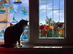 "Andreea Opris on Instagram: ""#cella #windowpainting #catsandwindows #ranunculus #cella♥️ #cats #catsofinstagram #instacats #instacatsgram #instacatslovers…"" Ranunculus, Cats Of Instagram, Window, Painting, Persian Buttercup, Windows, Painting Art, Paintings, Painted Canvas"