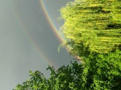 Double Rainbow right outside my house, this photo was taken of my deck!! May 30, 2013